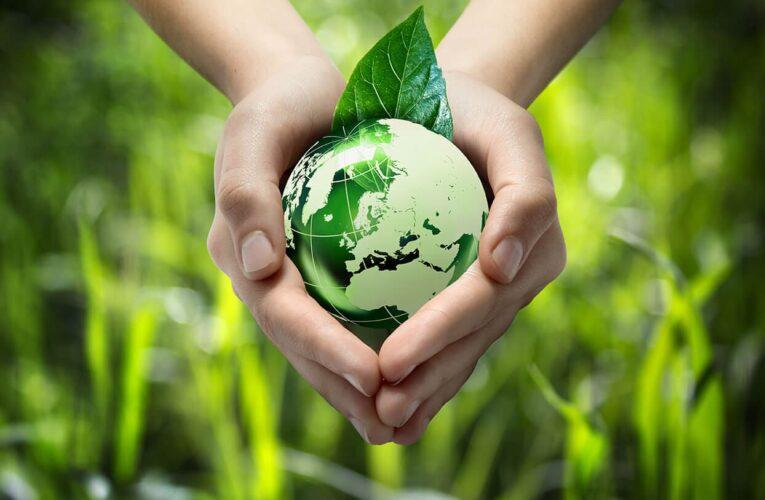 Конкурс сочинений на тему «Воспитанность человека и её влияние на экологию»